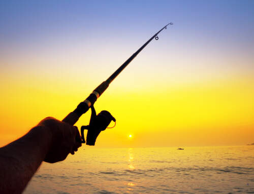 Best Times to Fish Around Galveston County, Texas