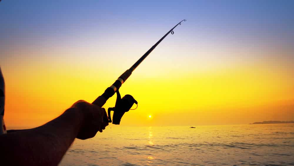 Knowing when to fish can make or break your fishing experience