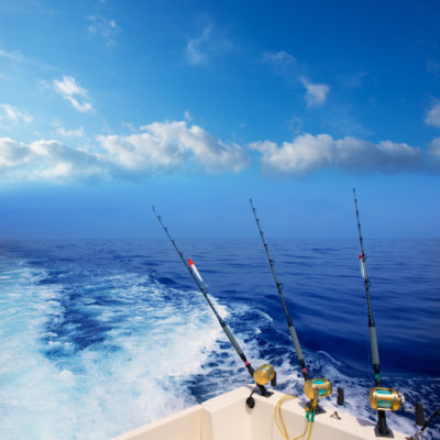 Let Galveston Fishing Charters take you offshore for some great fishing