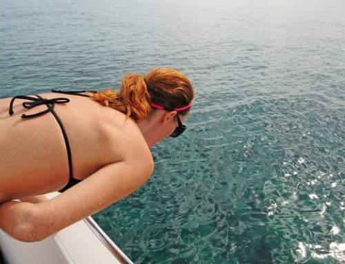 Enjoy Your Fishing Trip without Getting Seasick